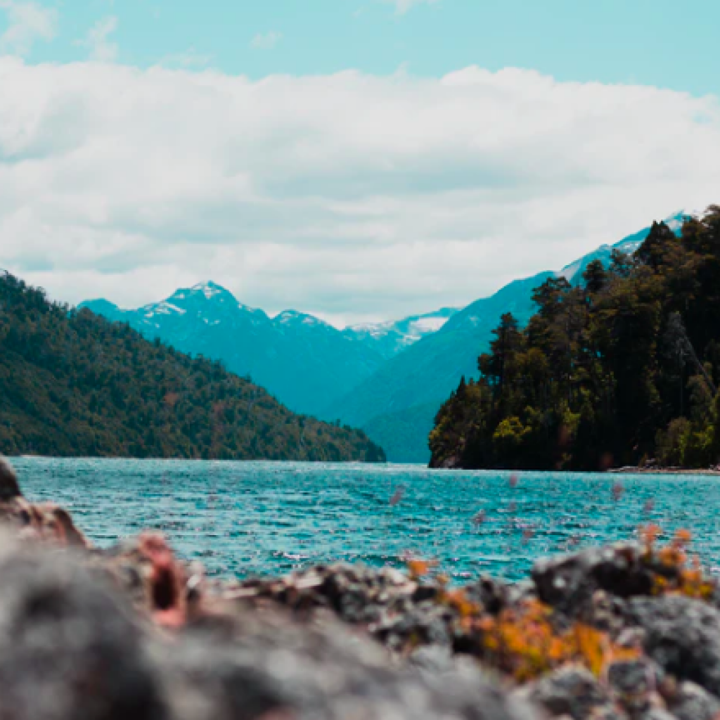 Bahía De Los Troncos, Bariloche, Argentina